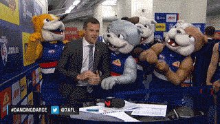 The DOGS ARE PREMIERS!!!   62 YEARS IN THE MAKING!  WE BLOODY DID IT. #bemorebulldog https://t.co/q6i7qhjP6y