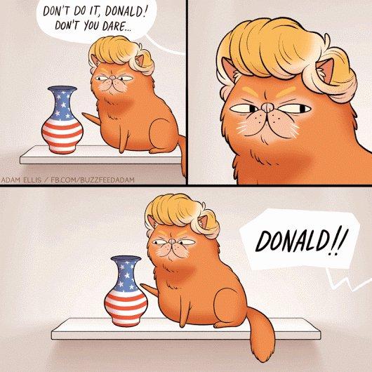 He did it. #Trump #USElection2016 https://t.co/w6QbBjtv4l