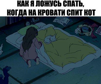 這幾天睡覺,一半的床都要讓給貓睡,貓奴只能睡剩下一半的位置... https://t.co/vLhpYzlrS9