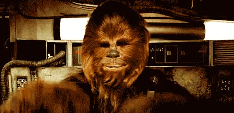 Happy Birthday Peter Mayhew! Thanks for bringing my favorite character to life :)