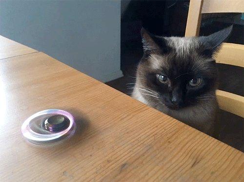#VIRAL ¿Qué es un #spinner y por qué es la sensación? https://t.co/24JblitQjF...