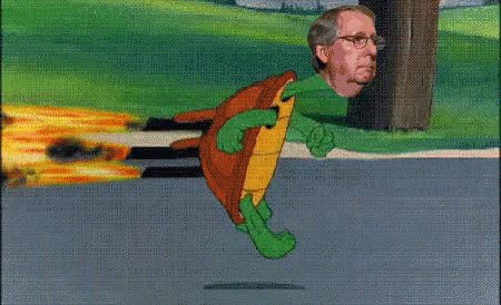 DAMN YOU, MITCH MCCONNELL!!! You've RUINED this day for me #WorldTurtleDay https://t.co/FV7rXZTeZk