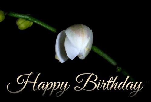 Happy Birthday, Miss. Pam Grier, hold it down...     Enjoy!!!