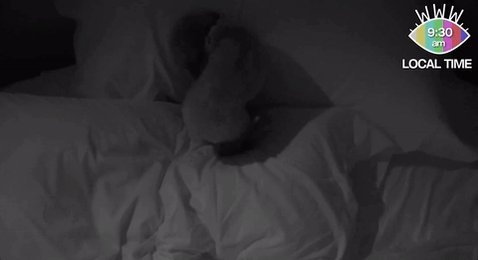Snug like a bug in a rug? Sweet dreams, @katyperry.☁️  #KPWWW https://t.co/ipglHAR9E5