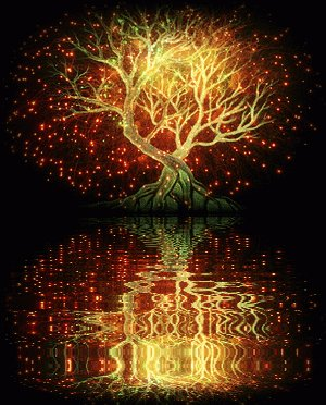Tree of Lights... https://t.co/OxIP7Y80im https://t.co/nwVhBoj62a