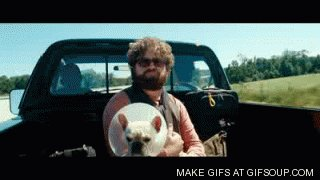 I watched the movie, Due Date the other day. Still love it. https://t.co/zBFHaKEJZt