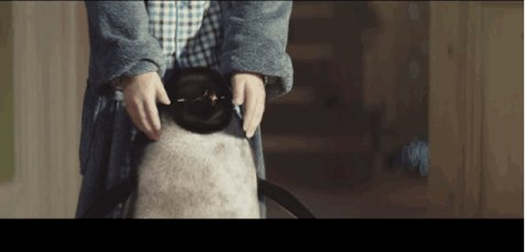 The star of the John Lewis 2017 Christmas advert has been revealed a day