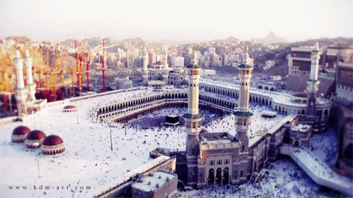 Muslims may lose Mecca if they fail to hold on to Jerusalem – Erdogan