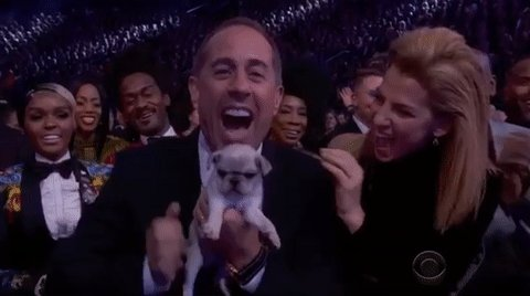 James Corden gave consolation puppies to people after they lost awards at the GRAMMYs: