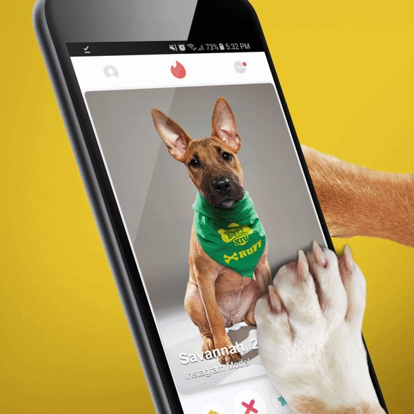 Swiping through @Tinder during the #SuperBowl? You might see a pup from #PuppyBowl looking for the perfect match! Text PUPPY to 707070 to donate to the @ASPCA! https://t.co/6nnjrcMrT3