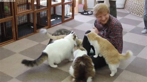 happy Birthday to Ed Sheeran