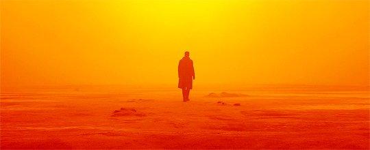 Roger Deakins  'Blade Runner 2 blade runner 2049