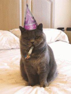 Happy Birthday Maisie!