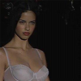 Happy Birthday, Adriana Lima. I won t cry for you, my mascara s too expensive.