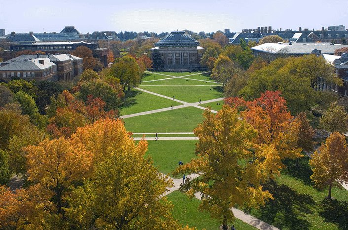 RT @giesbusiness: #ImTheHappiestWhen our #Illini are back to campus!  See you in just over a week 😊  #ILLINOISwelcome https://t.co/MgLFKcU3…