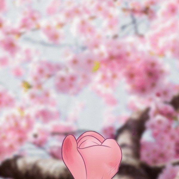 RT @theholykardash: ????The Beauty of Cherry Blossom Blooming???? https://t.co/T5FbAIvNUZ