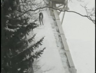 @AP_Oddities I think the same man also tried skiing for the first time on this hill in Germany. #AgonyofDefeat