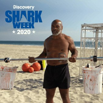 @hector79g Thanks for the ❤️! We'll do the heavy lifting and send you a reminder and sneak peek each night of #SharkWeek!  Reply #unsubscribe to opt-out.
