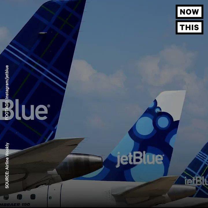 JetBlue Founder David Neeleman : Latest News, Breaking