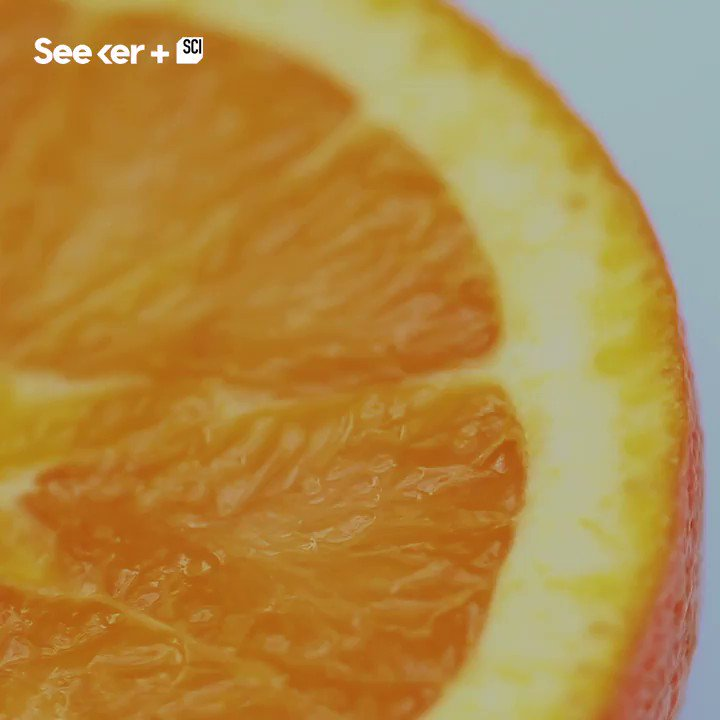 A squeezed orange shoots out tiny microjets of oil and juice, which could innovate aerosolized drugs.
