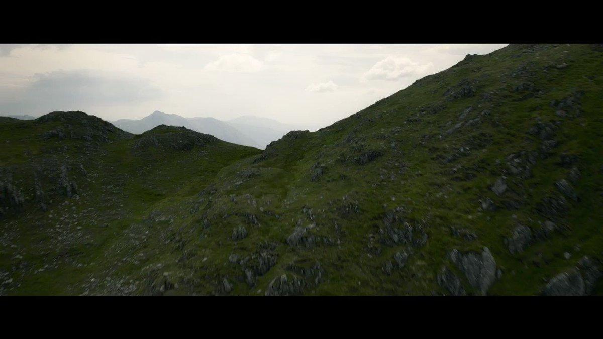 H I L O: Trailers de las películas más esperadas presentadas en la Comic-Con de San Diego: Trailer de #FantasticBeasts ¿qué tal?