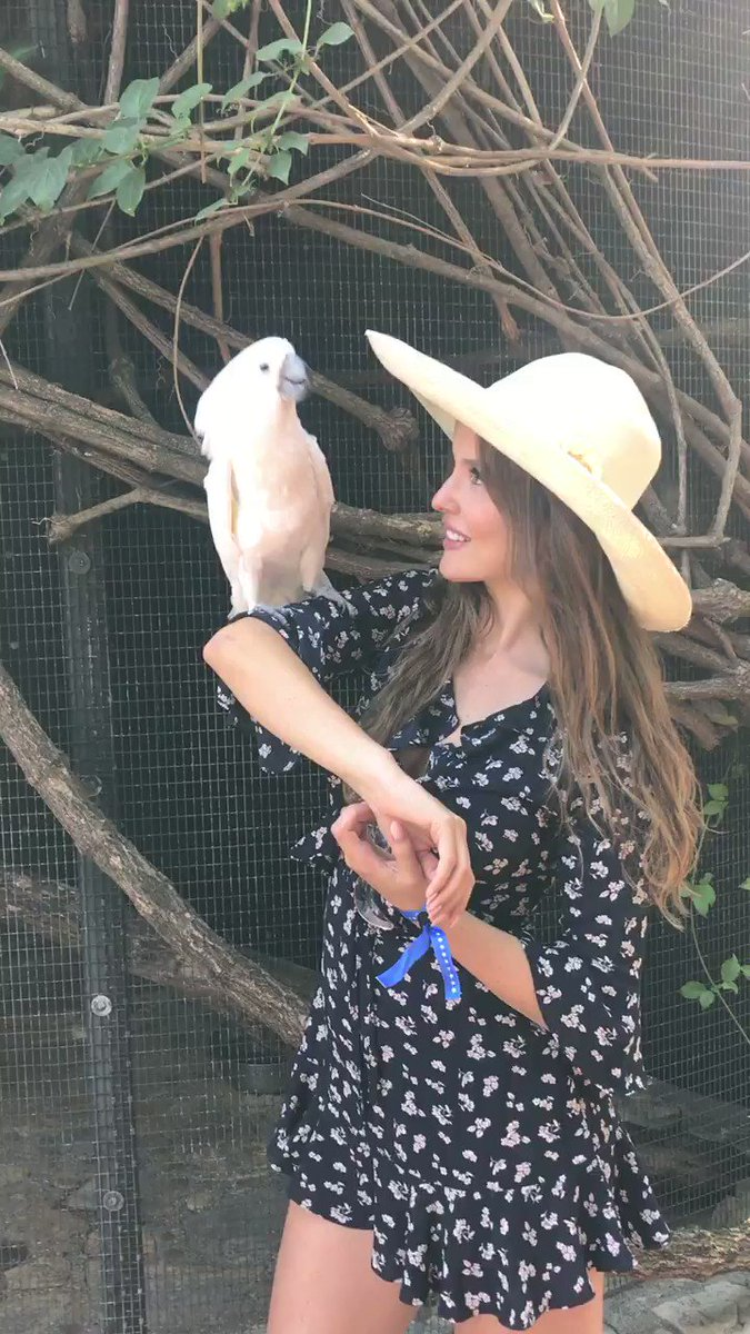 Amanda Cerny  - I miss her!! twitter @AmandaCerny