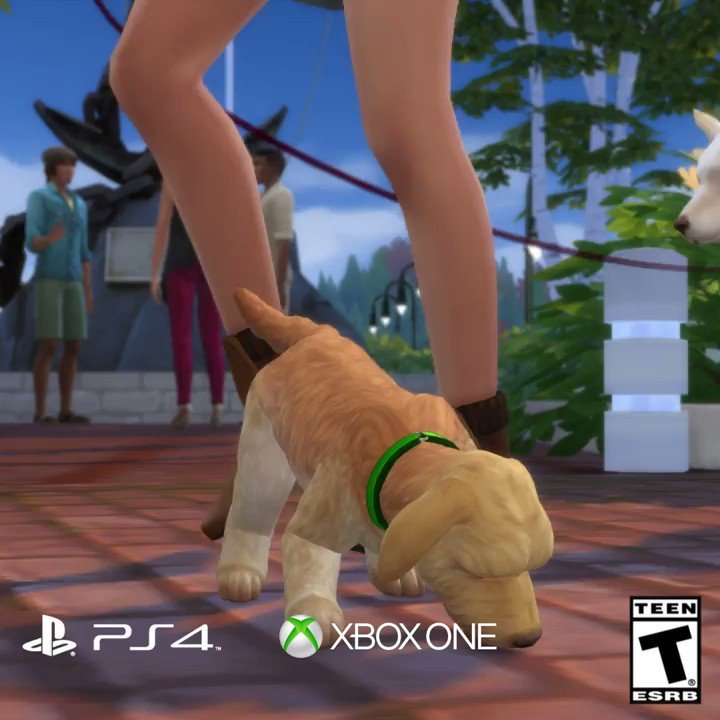 Ready for a furry companion? �� Cats & Dogs �� is out now on consoles! https://t.co/SZ0U3kswmH https://t.co/HImGa5gW5v