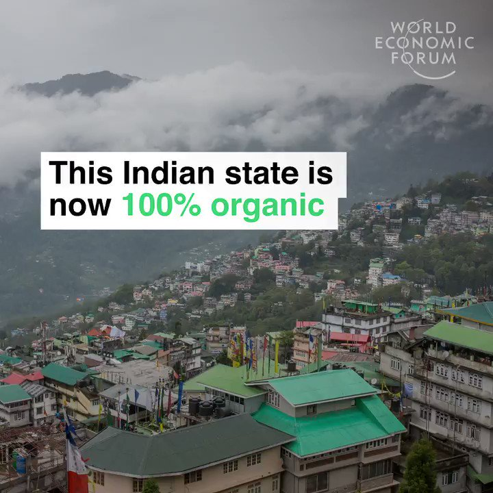 The Indian state of Sikkim is now 100% organic. No fertilizer. No pesticides. Demand for organic food grew 16% globally last year. India has highest percentage of organic farming anywhere in the world. Hats off!