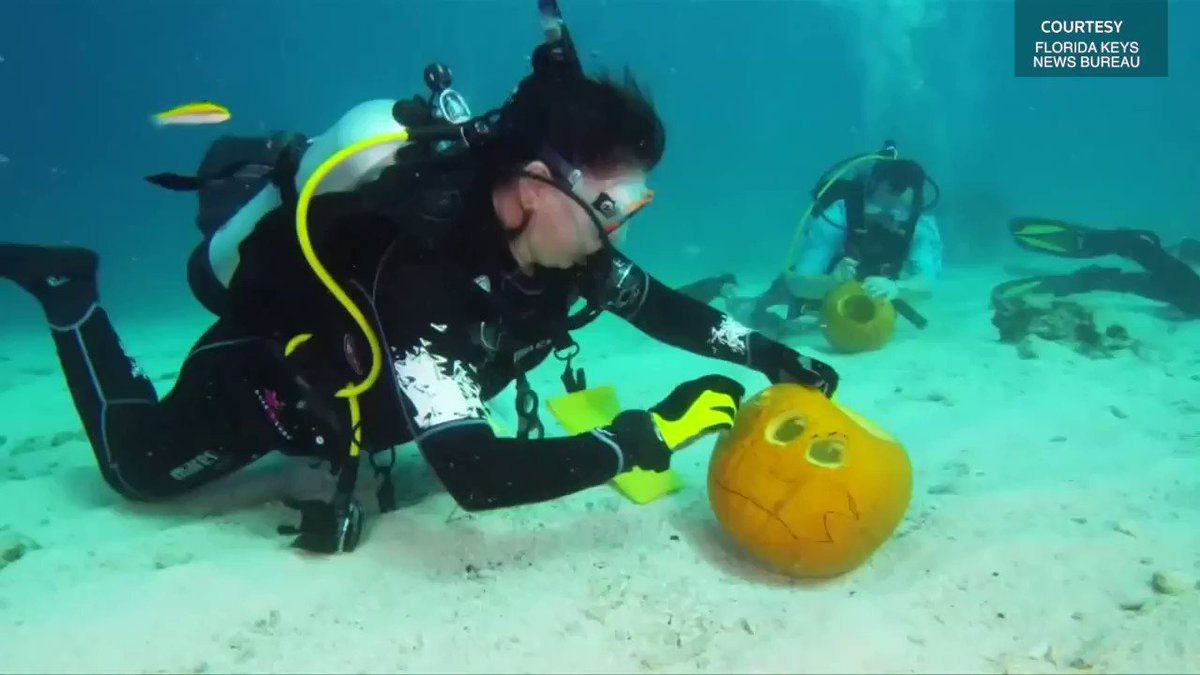 Florida locals take Halloween tradition under water https://t.co/Zgbxfl1TB3