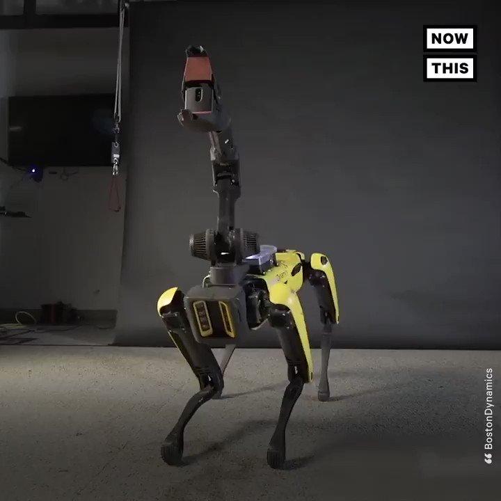Watch this dog robot twerk it out to Bruno Mars