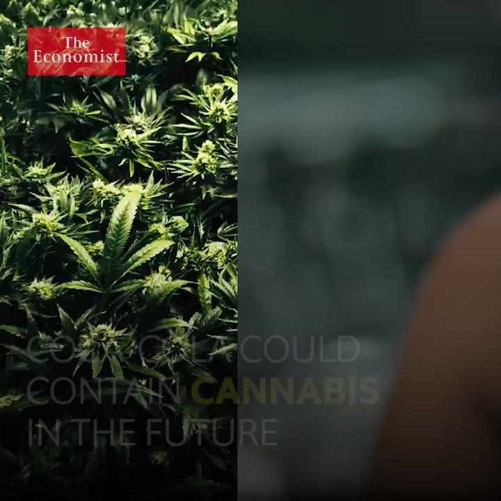 Might Coca-cola contain cannabis in the future? https://t.co/Z9rnHFoK81