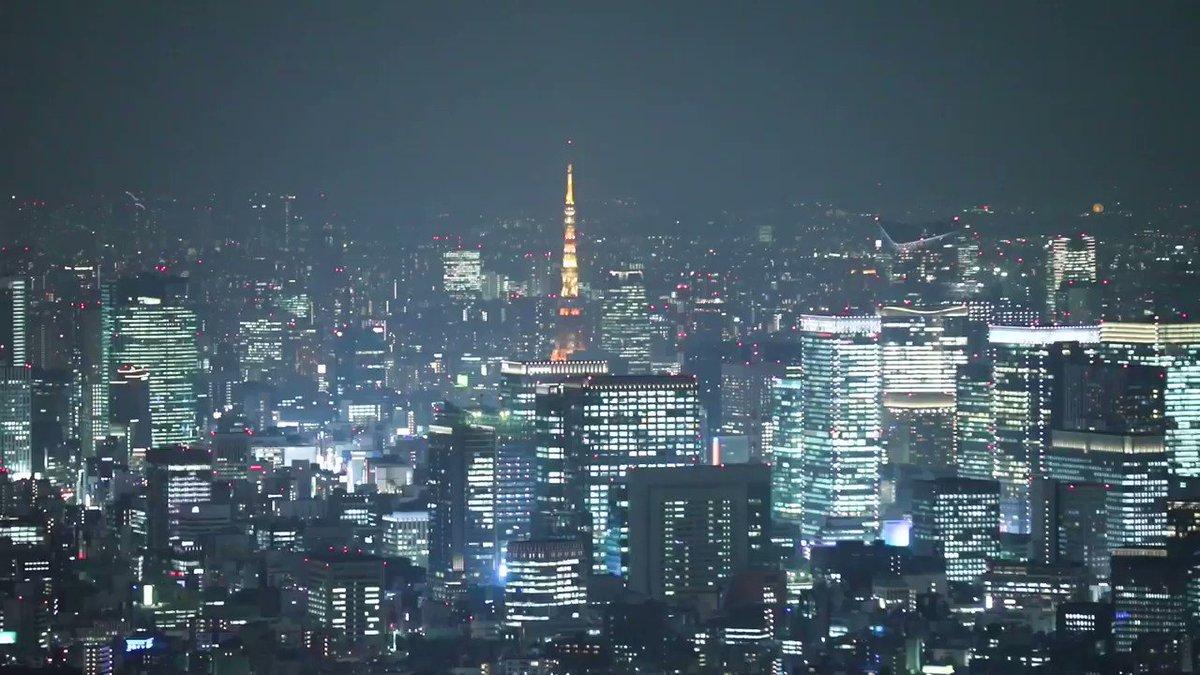 東京スカイツリーから眺めた都心部の夜景です。  #夜景 #Tokyo #東京スカイツリー #スカイツリー https://t.co/XizB3bFuPh