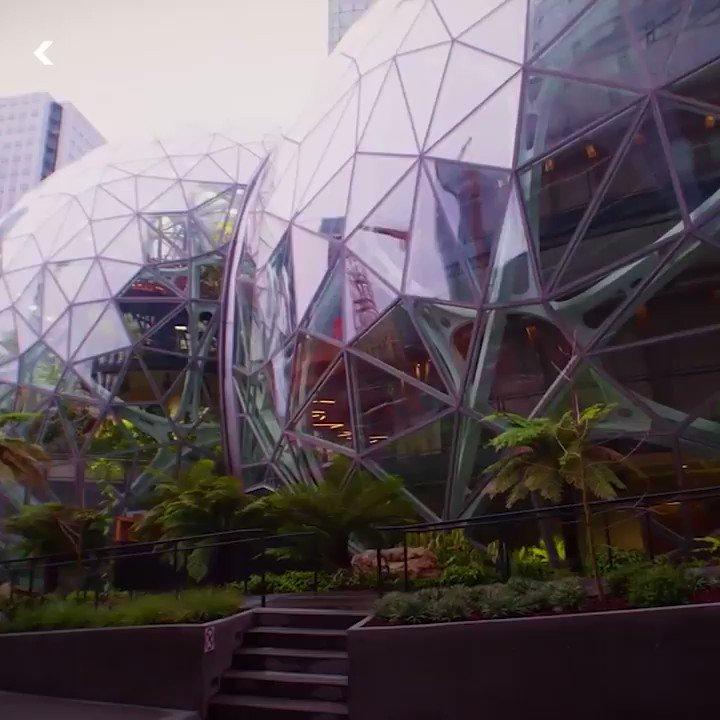 Amazon's botanical park transforms cubicle life into something beautiful.