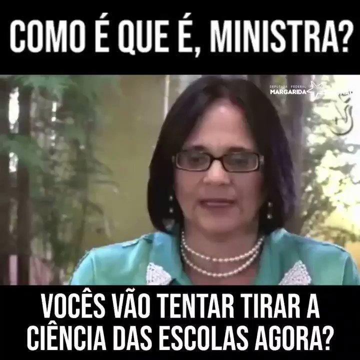 Margarida Salomão's photo on #darwinxdamares