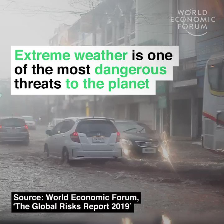 And it's getting worse. Read more: https://wef.ch/2sxZL40 #nature #environment