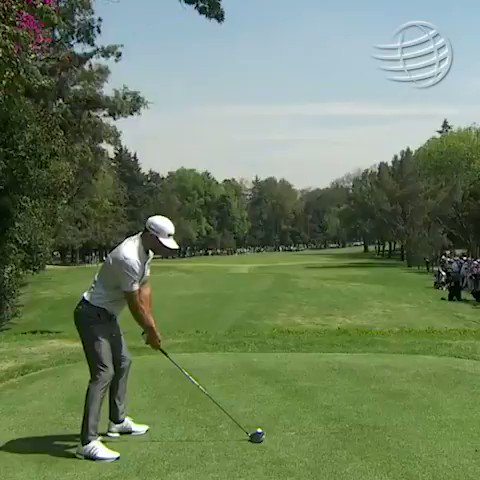 Video: Dustin Johnson Just Hit The Best Shot Of The Tournament