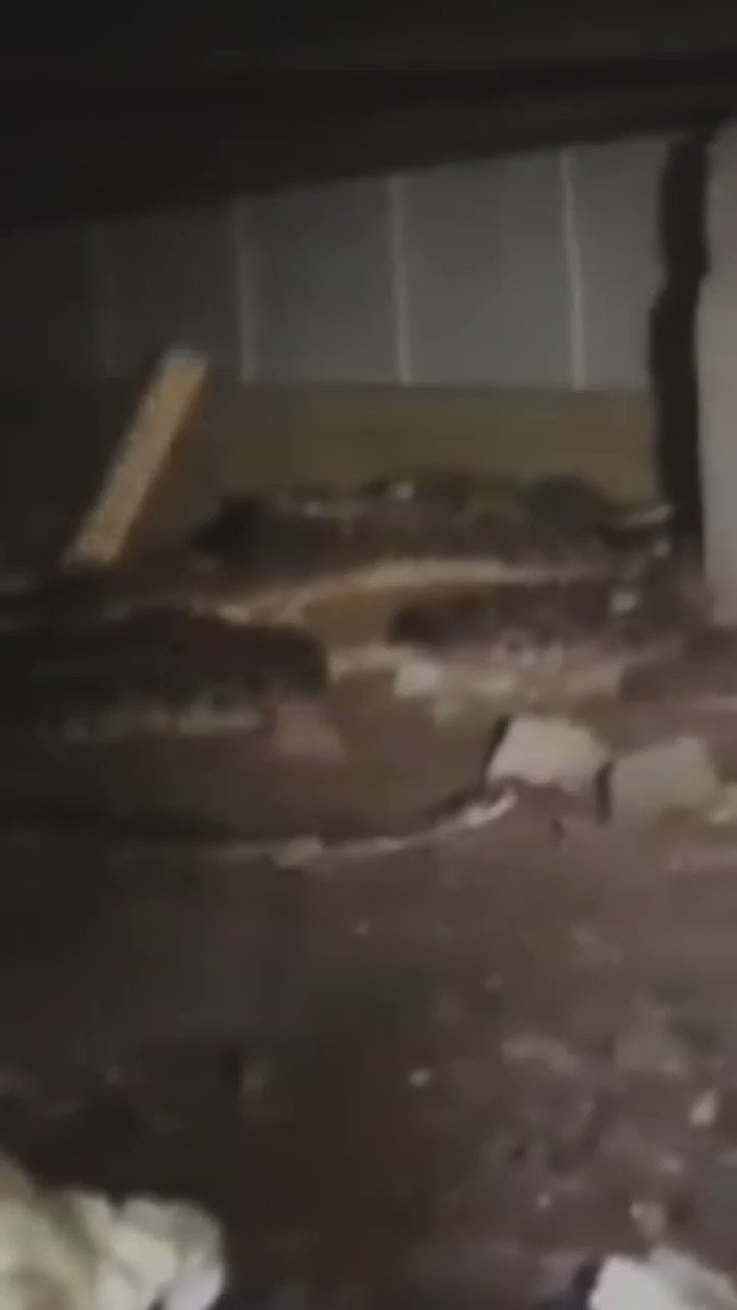 Man discovers 45 rattlesnakes living in his basement 🐍🐍🐍🐍🐍🐍🐍  [Tap to expand] http://bbc.in/2TV11O1
