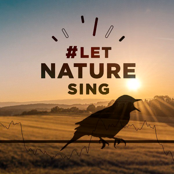 Skylarks will start to sing from well before dawn and continue until well after dusk, with the intention of attracting a mate. Hear their wonderful song whenever with our bird song single, pre-order here: http://natu.re/2Rxcrz 🐦🎼🎶🎵 #LetNatureSing