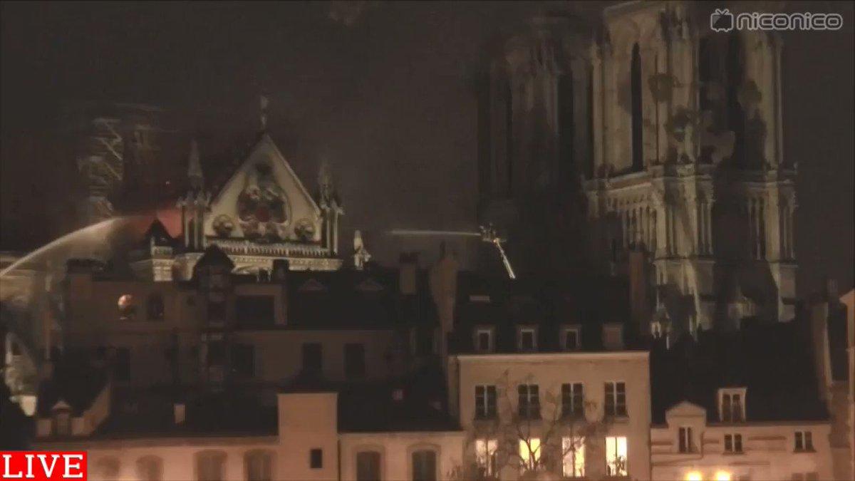 ニコニコニュース's photo on フランスのパリ