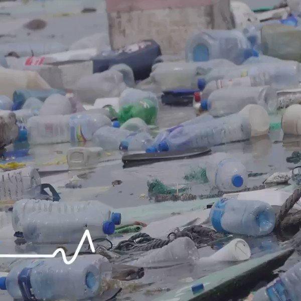 À loccasion de la #JournéeMondialeDeLaTerre, 18 grands médias & des agences de l@ONU_fr sassocient pour raconter des histoires de solutions pour remédier aux défis posés par la #pollution & les #déchets. Et vous que faites-vous pour #EarthDay ? @ONUEnvironmt #JournéeDeLaTerre