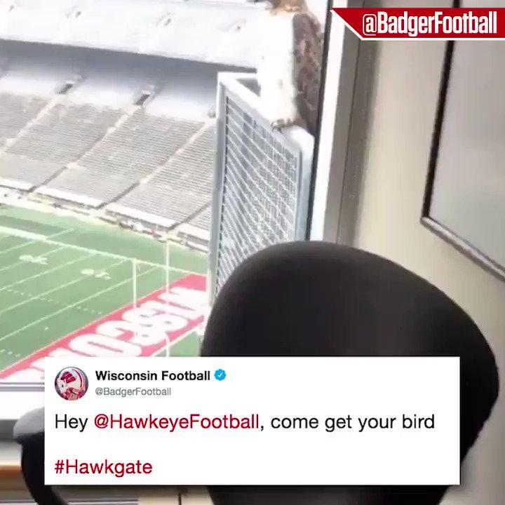 .@HawkeyeFootball has a spy on the inside 👀 (via @BadgerFootball)