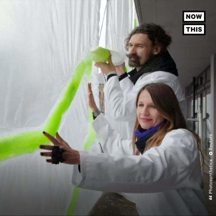 These designers created an algae-filled curtain to fight air pollution