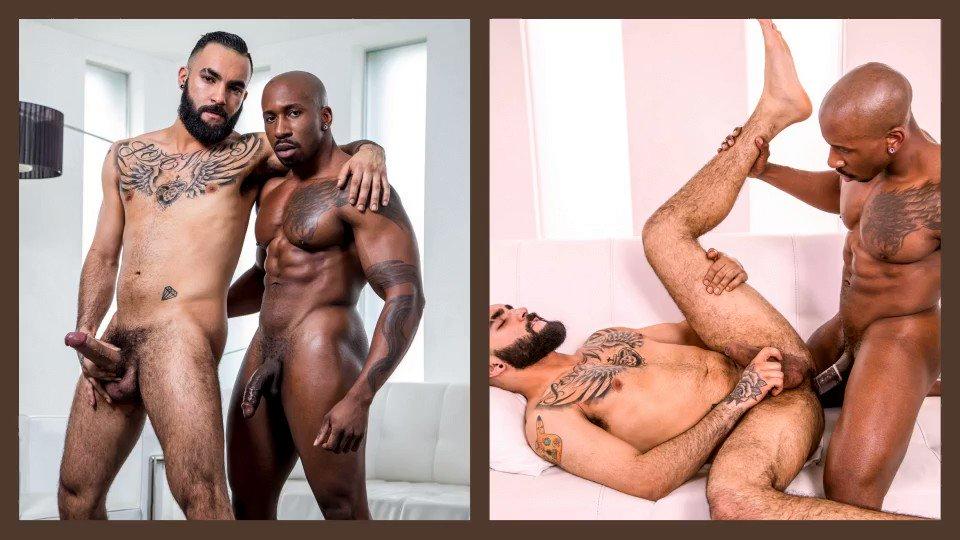 www bigblackdick ragazze grasse amano il grosso Dick