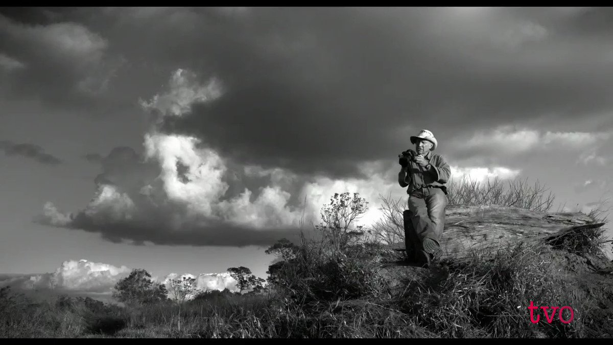 """For 40 years, Brazilian photographer Sebastião Salgado has traveled across the continents in the footsteps of humanity. Watch """"Salt of the Earth"""" tonight at 9 pm on @TVO."""