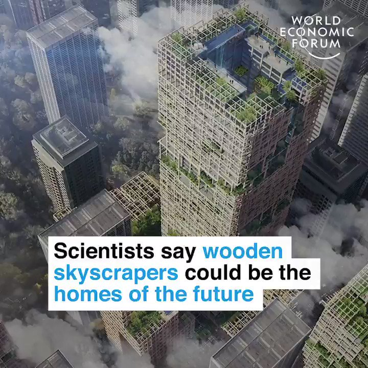 Building the future with 'plyscrapers'.   📕 Read more: https://wef.ch/2Y2bncO #sustainability #construction