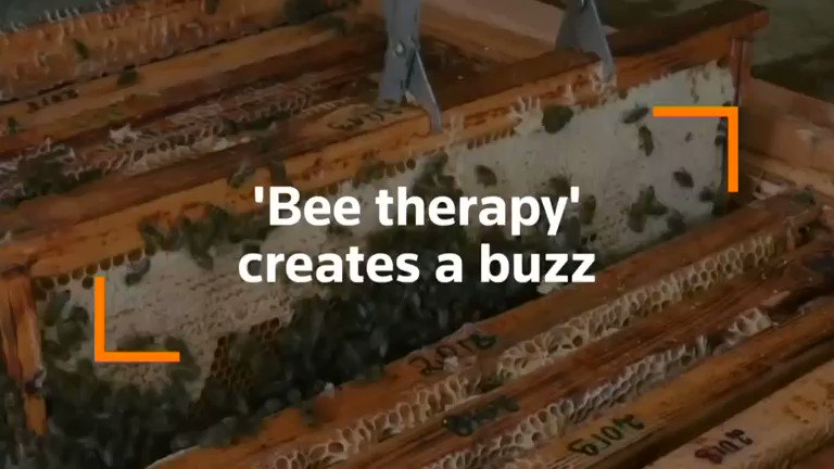 ICYMI: An alternative form of therapy where people lie on beds over beehives is creating a buzz in Lithuania