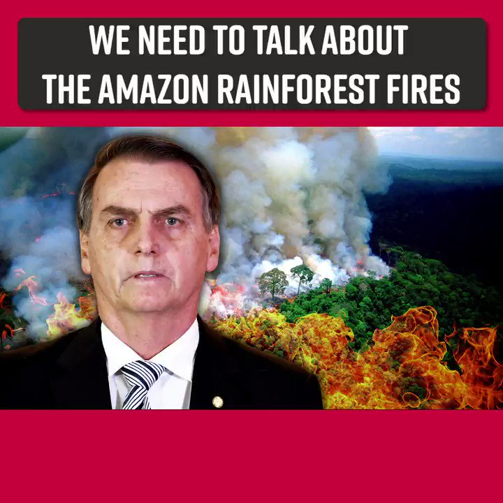 We need to get more attention on the Amazon rainforest fires.  This is INSANE. RT