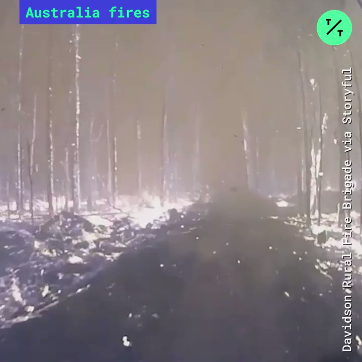 """At least 3 people are dead and more missing as Australia braces for more #bushfires. @NSWRFS fire warnings have reached """"catastrophic"""" levels. More @business: bloom.bg/2Qc7thn"""