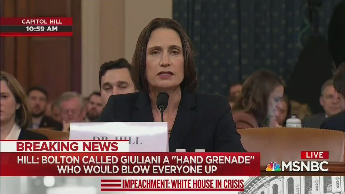 "Fiona Hill testifies that John Bolton sensed almost right away that the quid pro quo was wrong, and later told her to tell NSC lawyers that he ""wanted no part of whatever drug deal Mulvaney and Sondland are cooking up."""