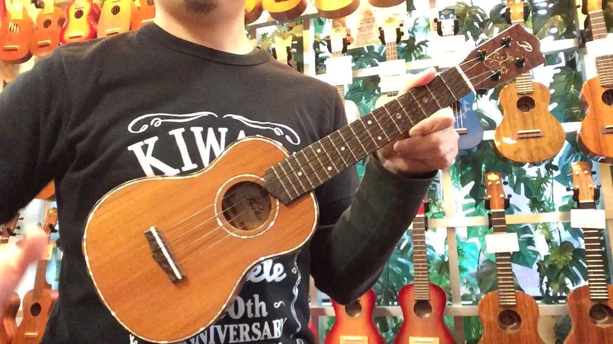 【床の間シリーズ弾いてみました♪】先日の投稿で反響が大きかったこちらのウクレレスタッフに弾いてもらいました!良い音~~♪【床の間シリーズ】 Peerless 2019秋限定モデル PUK-C LTD 欅 (ケヤキ) #ウクレレ #ukulele #キワヤ #KIWAYA #キワヤ商会